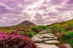 ireland, national park, connemara
