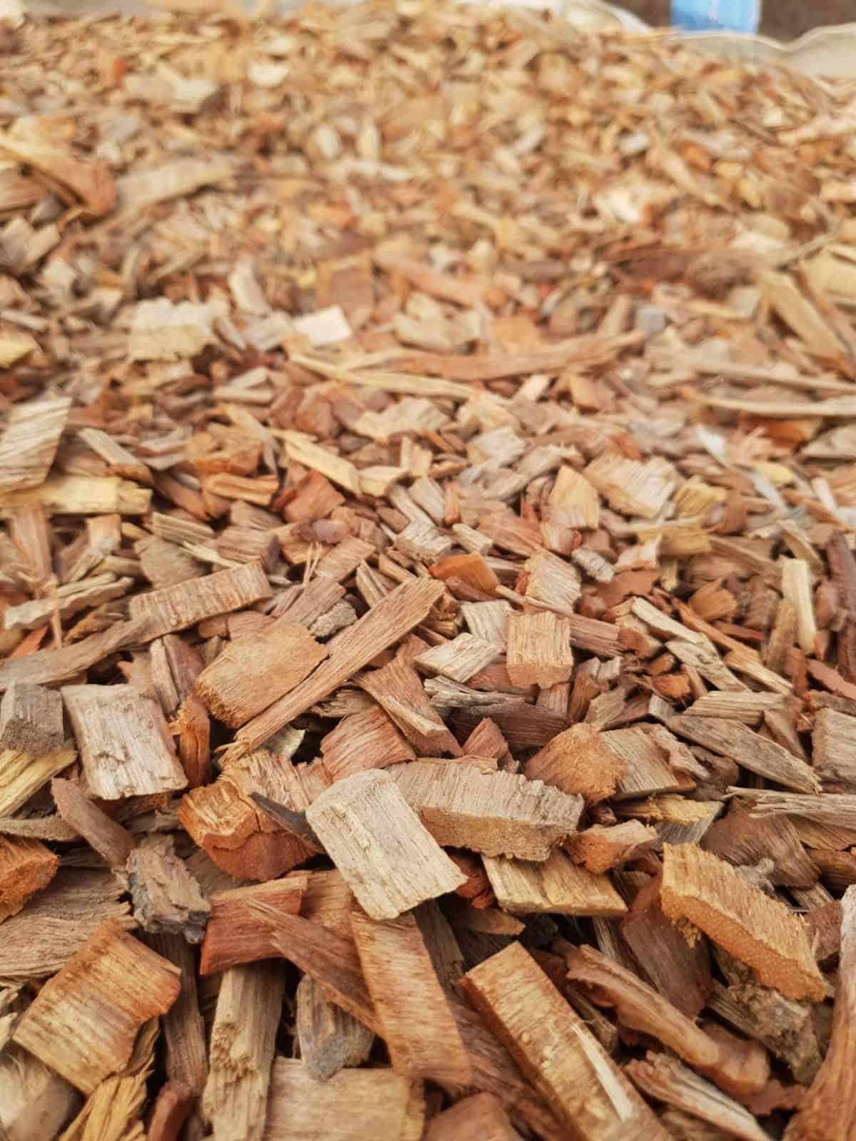שבבי עץ (אורגני)