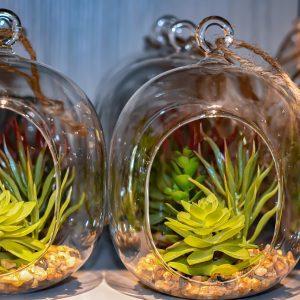 glass-plant-artificial-plants-4619600-2
