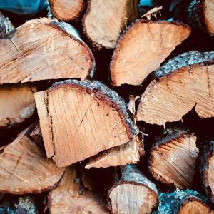 wood-tree-firewood-3158428-2